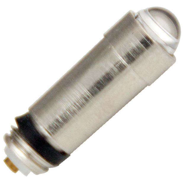 wa-00300a-bulb.jpg
