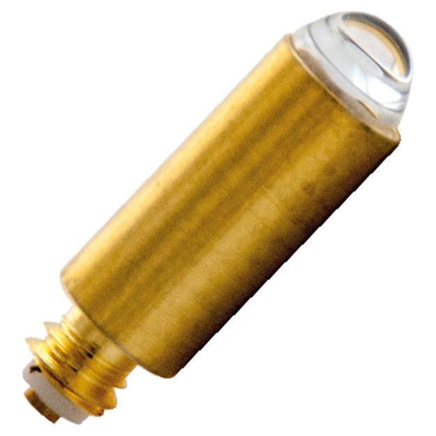 88035-bulb.jpg