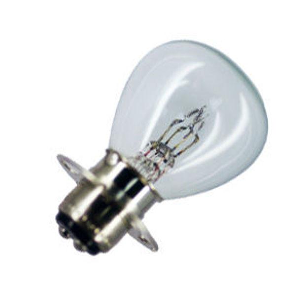 2530-bulb.jpg
