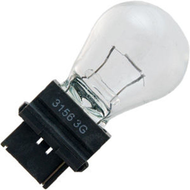 3156-bulb.jpg