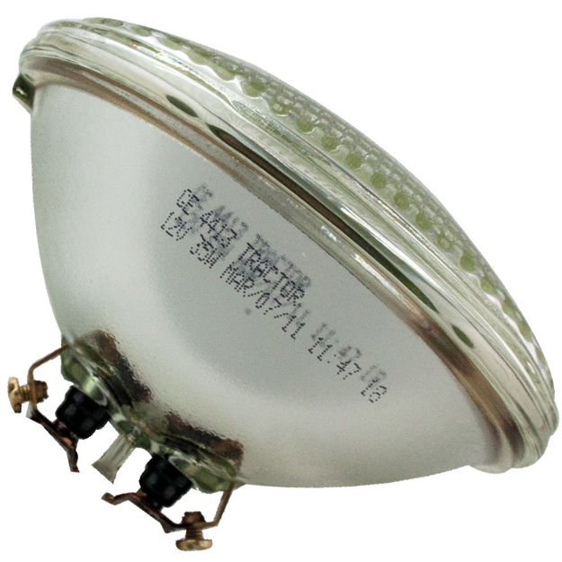 4413-bulb.jpg