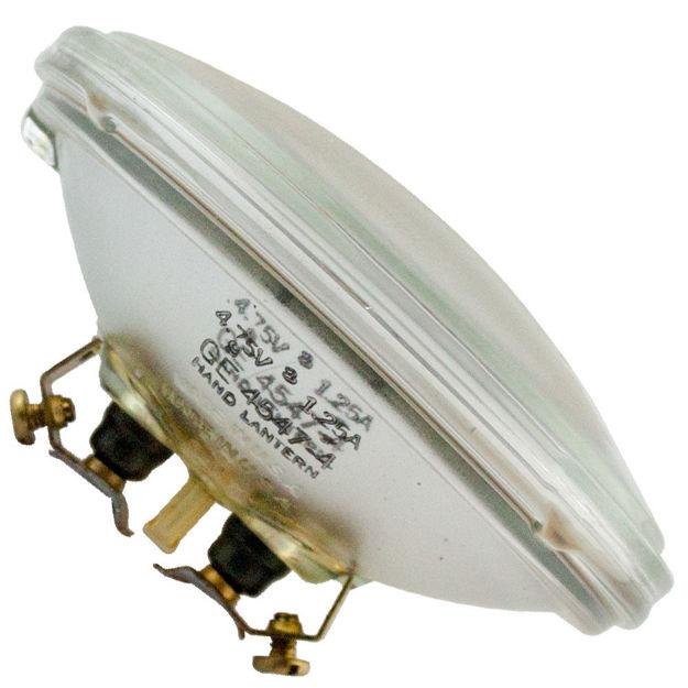 4547-bulb.jpg