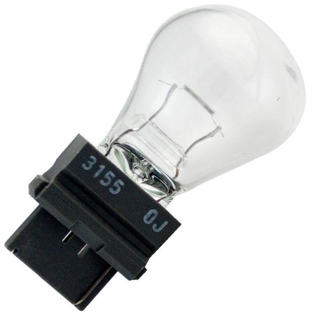 3155-bulb.jpg