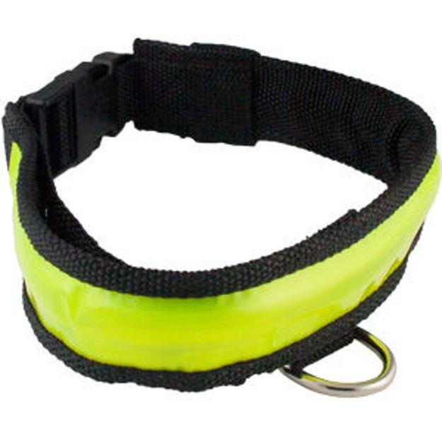 scxlg-collar.jpg