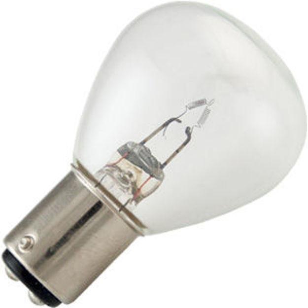 1196-bulb.jpg