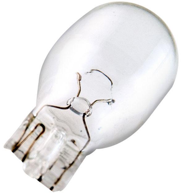 901-bulb.jpg
