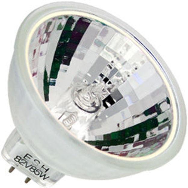 esh-bulb.jpg
