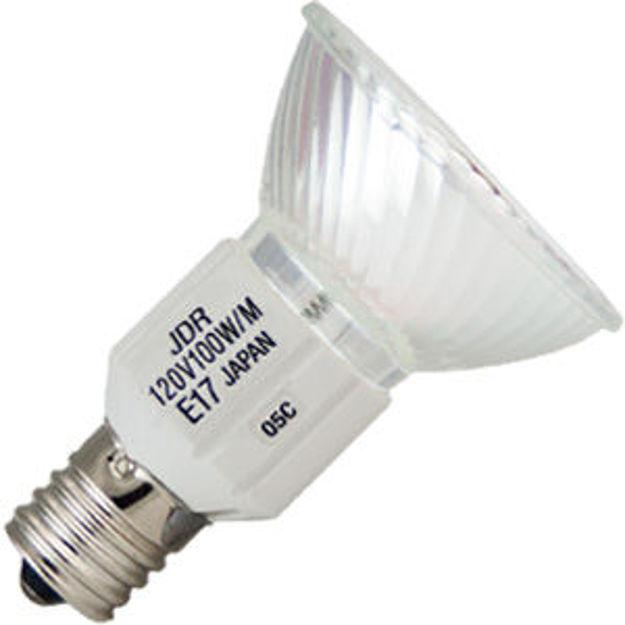 fse-bulb.jpg