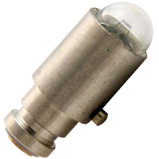 wa-03900-bulb.jpg
