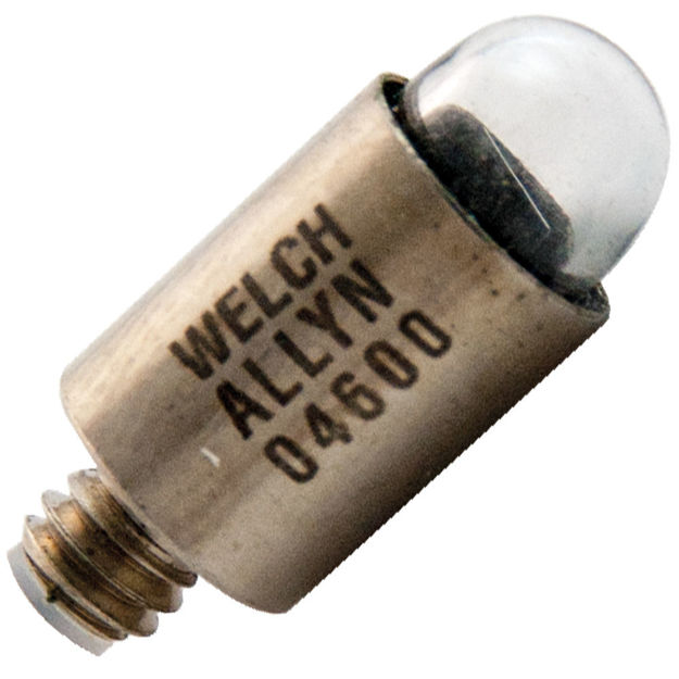 wa-04600-bulb.jpg