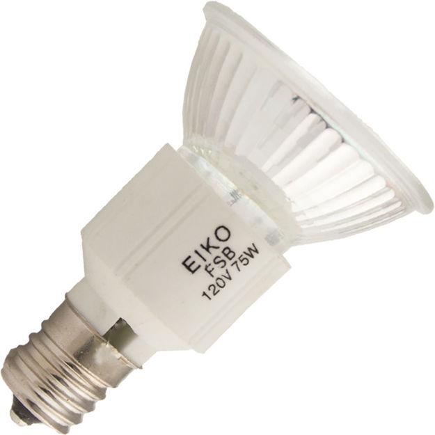 fsb-bulb.jpg