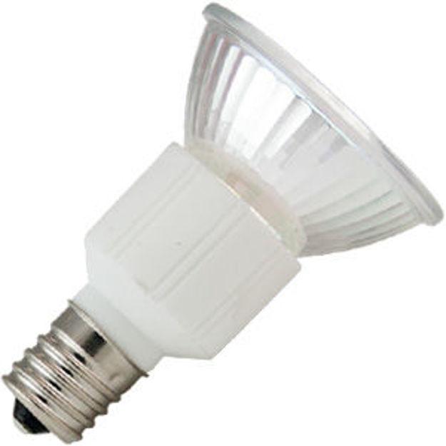 fsc-bulb.jpg