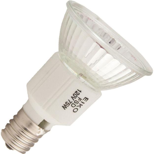 eiko-fsd-bulb.jpg