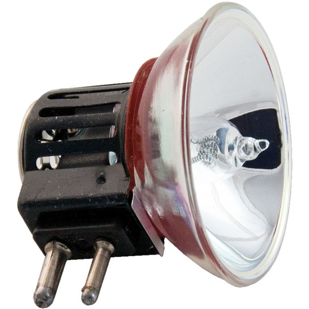 emm-5-bulb.jpg