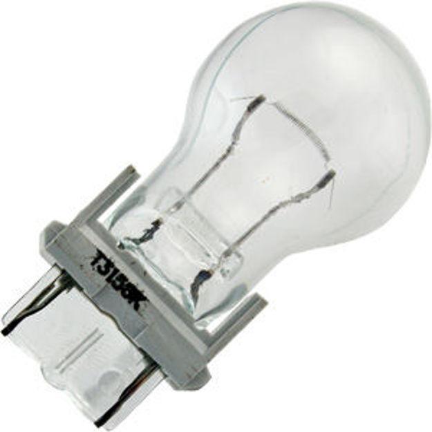 3156kr-bulb.jpg