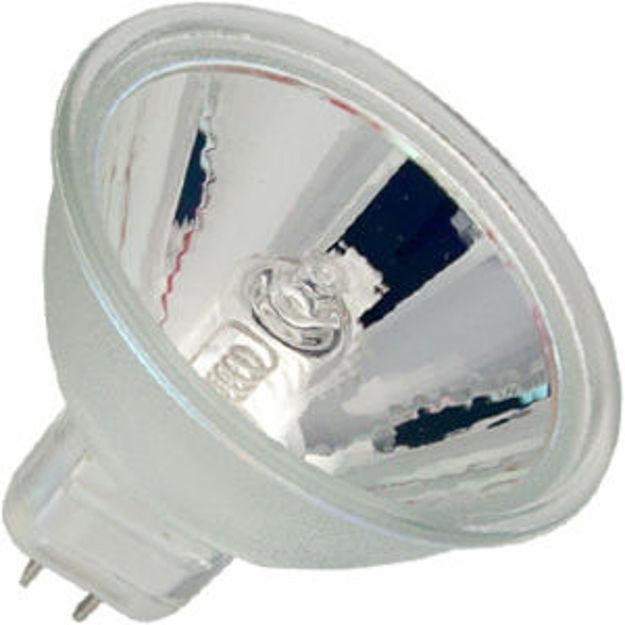 enh5-bulb.jpg