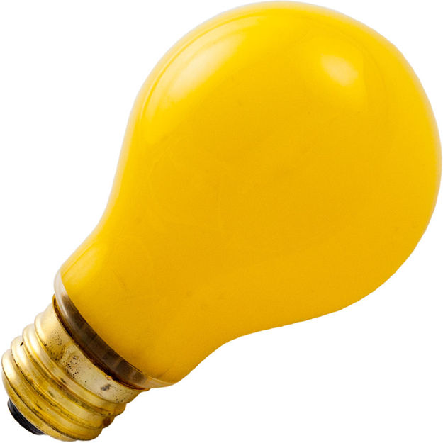 100a-yellow-buglight.jpg