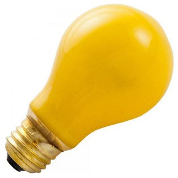 a19-yellow_1.jpg