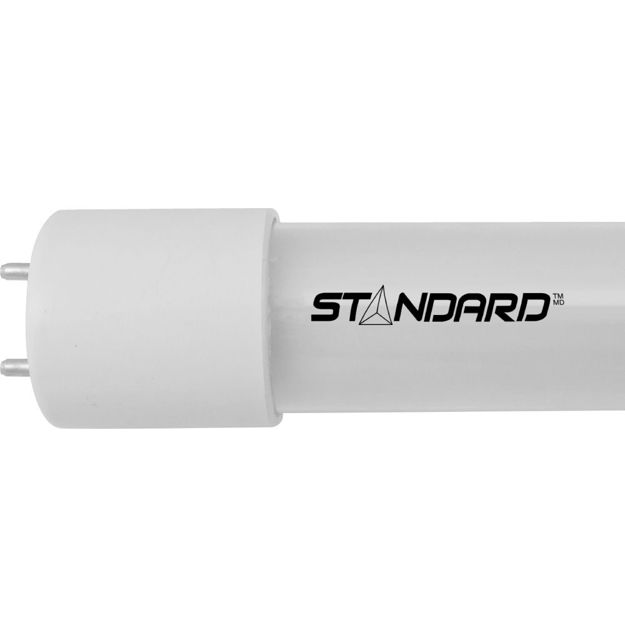 std-t8-g4_1.jpg