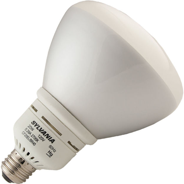 cf20el_br40_2700k-bulb.jpg