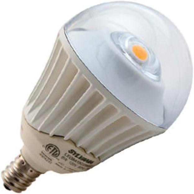 sy78884-bulb.jpg