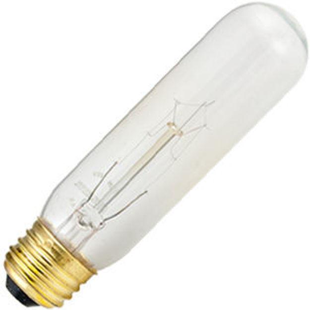 15t10-bulb.jpg