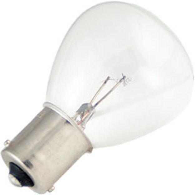 1133-bulb.jpg