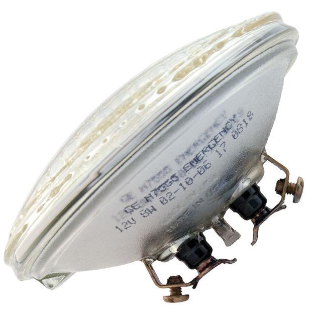 h7555-bulb.jpg