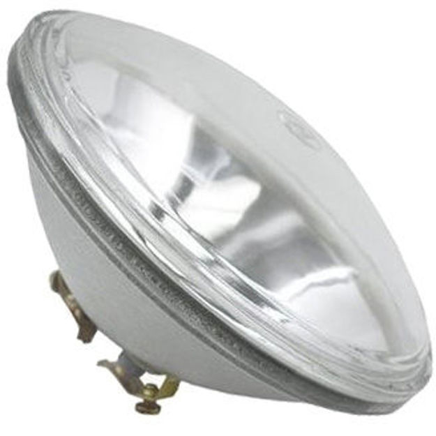 4545-bulb.jpg