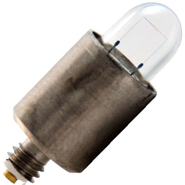 wa-01800-bulb.jpg